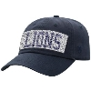 Tinsel Lion Cap Image