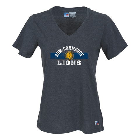 Image For Lions V-neck